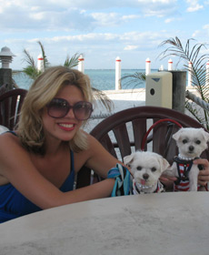 Sarasota during 'Hula Hoop' with my world traveling dogs
